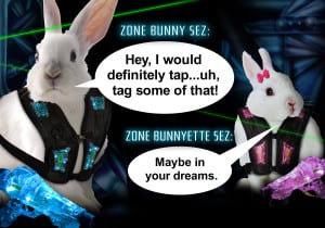 Laser Zone Bunny Sez: I Would Tag That! - Ultrazone
